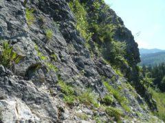 Klettersteig Jochpass : Ostrachtaler klettersteig