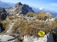 Klettersteig Hindelang : Hindelanger klettersteig foto bild landschaft berge natur