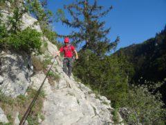 Klettersteig Traunstein : Naturfreundesteig traunstein leichtester weg hoch zur gmundner hütte