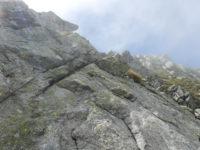 Klettersteig Naturns Knott : Knott klettersteig