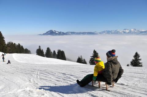 Rodelatlas – 75 Schlittenbahnen in Deutschland und den Alpen