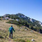 nach-250km-2 - Handschlaufen - Black Diamond Trail Pro Trekkingstöcke via dalmatica