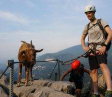 Foto-Blog: Die schönsten Klettersteig Fotos des Monats